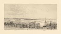 Rye Marshes.
