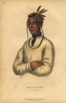 Caa-Tou-See,  An Ojibway.