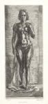 Standing Nude.