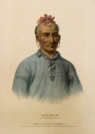 Kish-Kal-Wa. A Shawanoe Chief