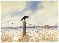 Wintered Fields. [Untitled].